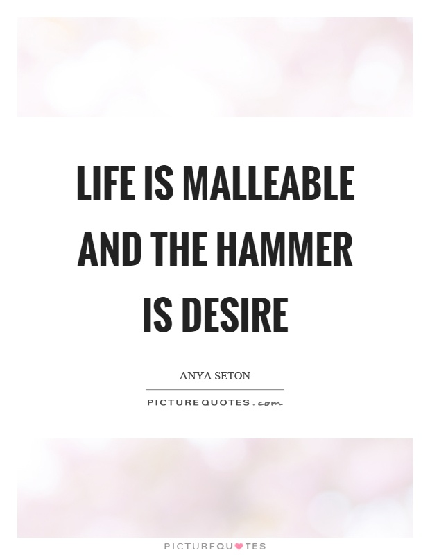 Life is malleable and the hammer is desire Picture Quote #1