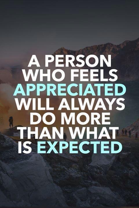 A person who feels appreciated will always do more than what is expected Picture Quote #1