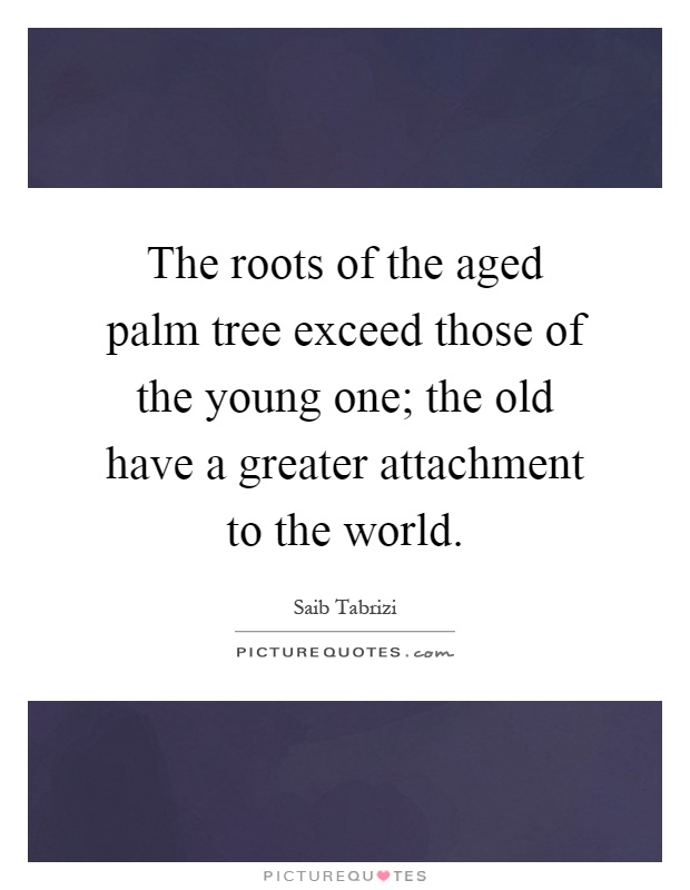 The roots of the aged palm tree exceed those of the young one; the old have a greater attachment to the world Picture Quote #1