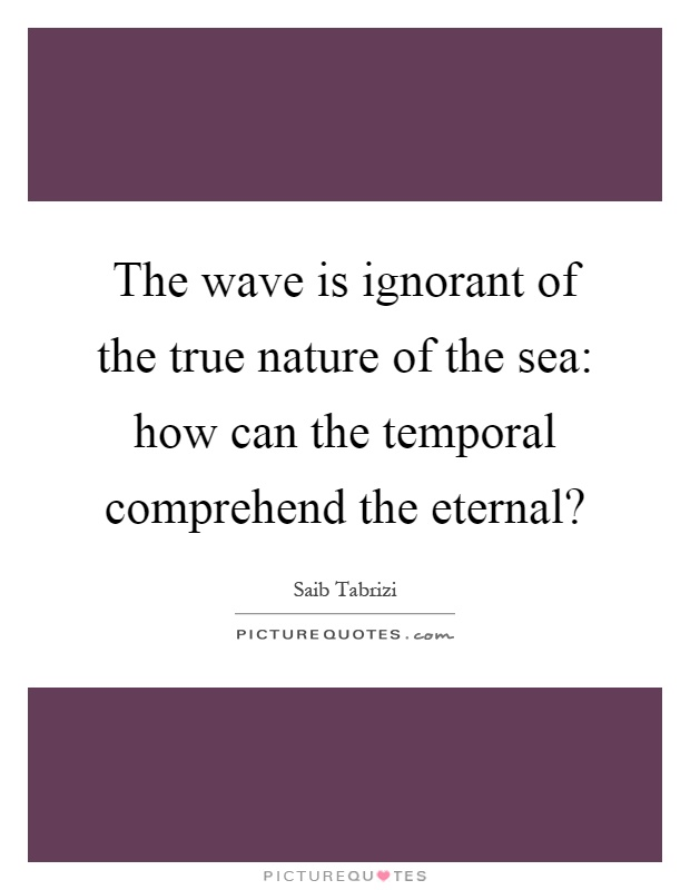 The wave is ignorant of the true nature of the sea: how can the temporal comprehend the eternal? Picture Quote #1