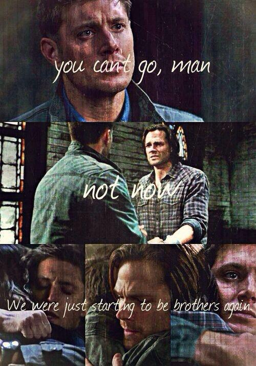 You can't go, man. Not now. We were just starting to be brothers again Picture Quote #1