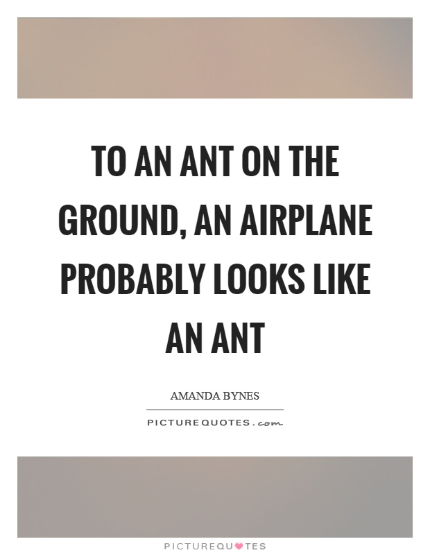 To an ant on the ground, an airplane probably looks like an ant Picture Quote #1
