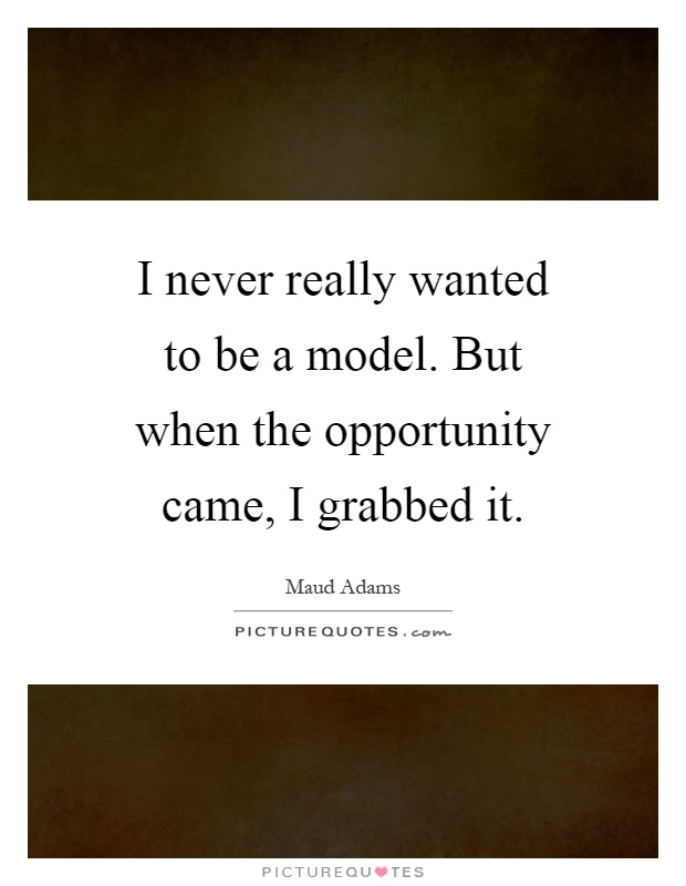 I never really wanted to be a model. But when the opportunity came, I grabbed it Picture Quote #1
