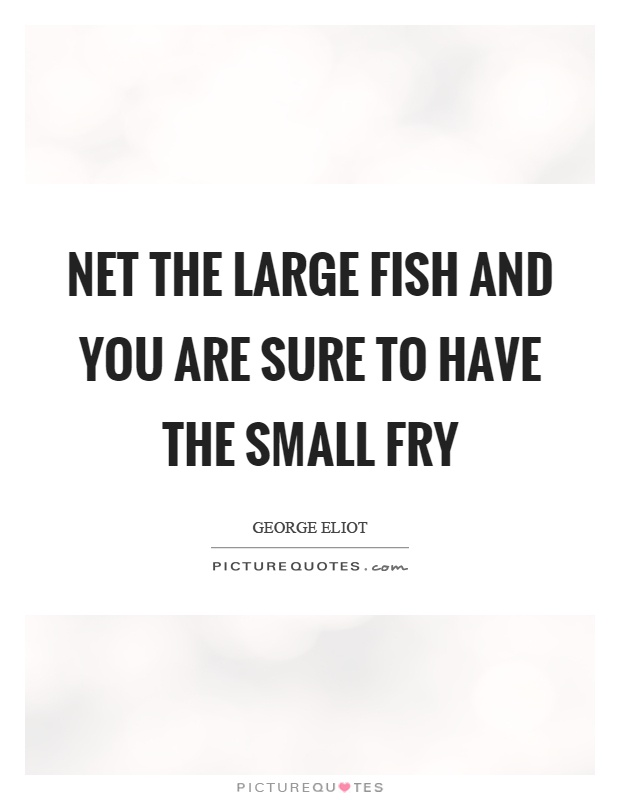 Net the large fish and you are sure to have the small fry Picture Quote #1