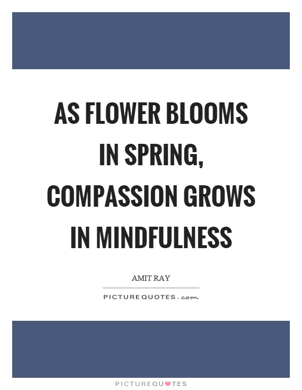 As flower blooms in spring, compassion grows in mindfulness Picture Quote #1