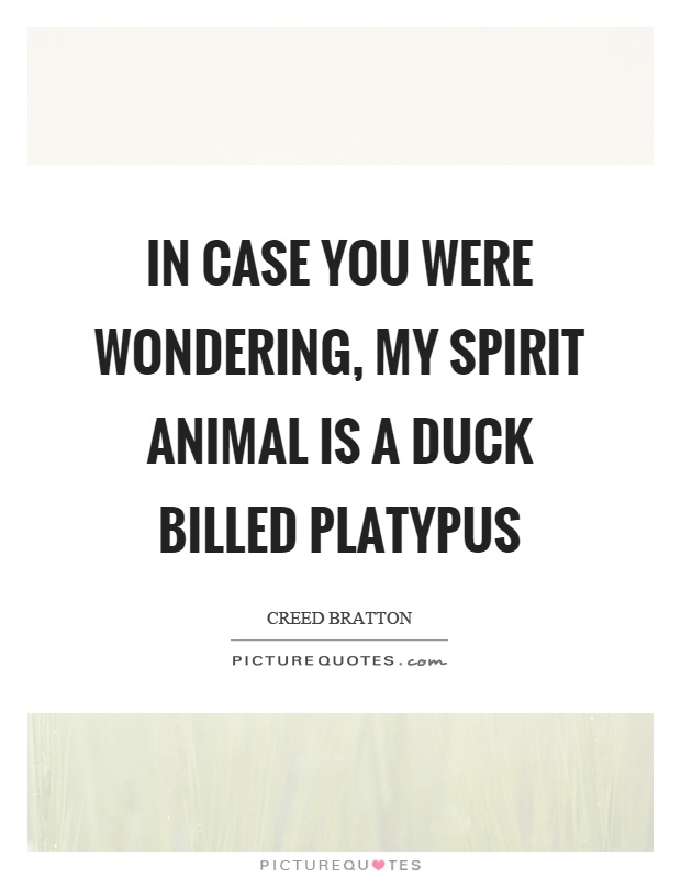 In case you were wondering, my spirit animal is a duck billed platypus Picture Quote #1