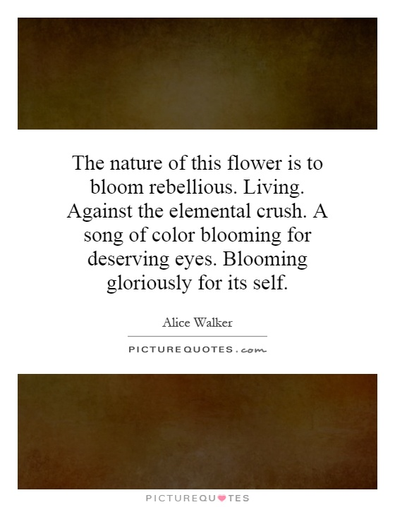 The nature of this flower is to bloom rebellious. Living. Against the elemental crush. A song of color blooming for deserving eyes. Blooming gloriously for its self Picture Quote #1