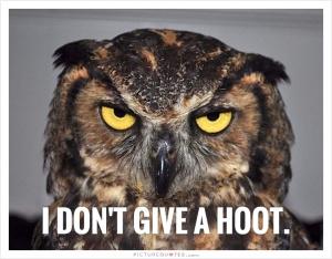 Single treffen owl hoot quotes Owl Jokes - Animal Jokes