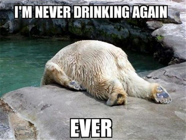 I'm never drinking again. Ever Picture Quote #1