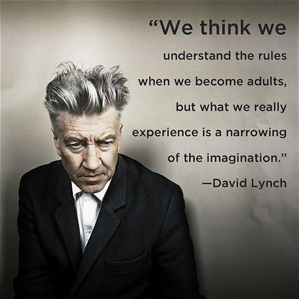 We think we understand the rules when we become adults, but what we really experience is a narrowing of the imagination Picture Quote #1