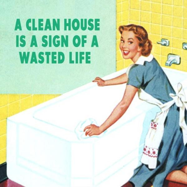 A clean house is a sign of a wasted life Picture Quote #1