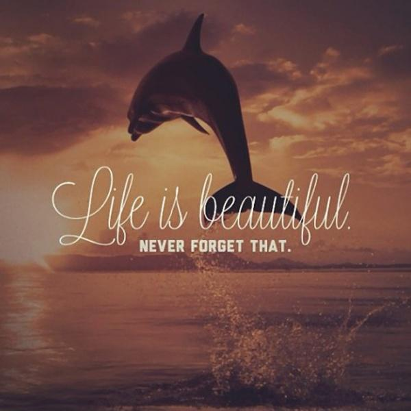 Life is beautiful, never forget that Picture Quote #1