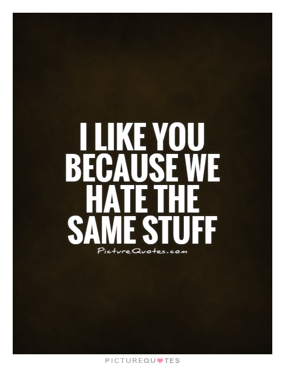 I like you because we hate the same stuff Picture Quote #1