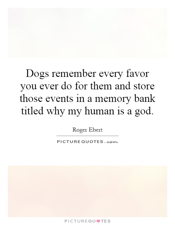 Dogs remember every favor you ever do for them and store those events in a memory bank titled why my human is a god Picture Quote #1