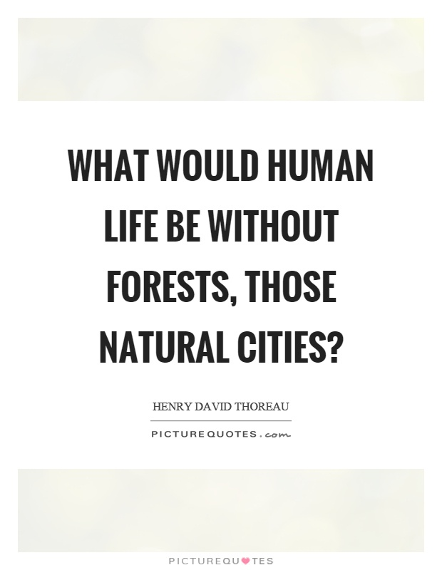 What would human life be without forests, those natural cities? Picture Quote #1