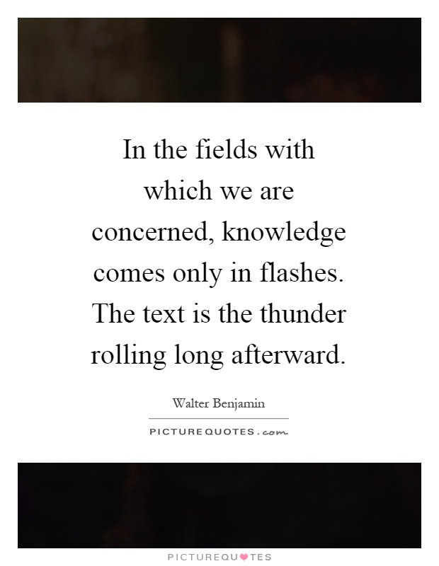 In the fields with which we are concerned, knowledge comes only in flashes. The text is the thunder rolling long afterward Picture Quote #1