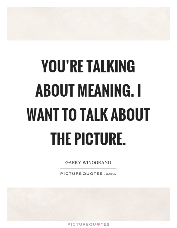 You're talking about meaning. I want to talk about the picture Picture Quote #1