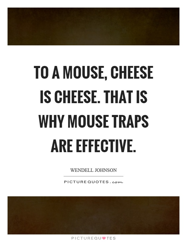 To a mouse, cheese is cheese. That is why mouse traps are effective Picture Quote #1