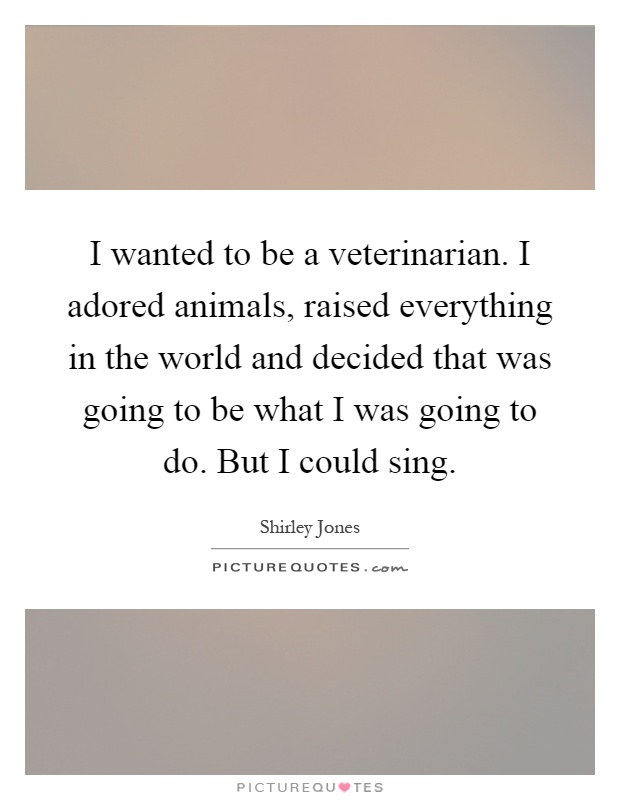 everything about being a veterinarian