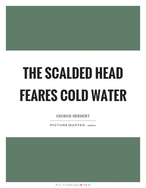 The scalded head feares cold water Picture Quote #1