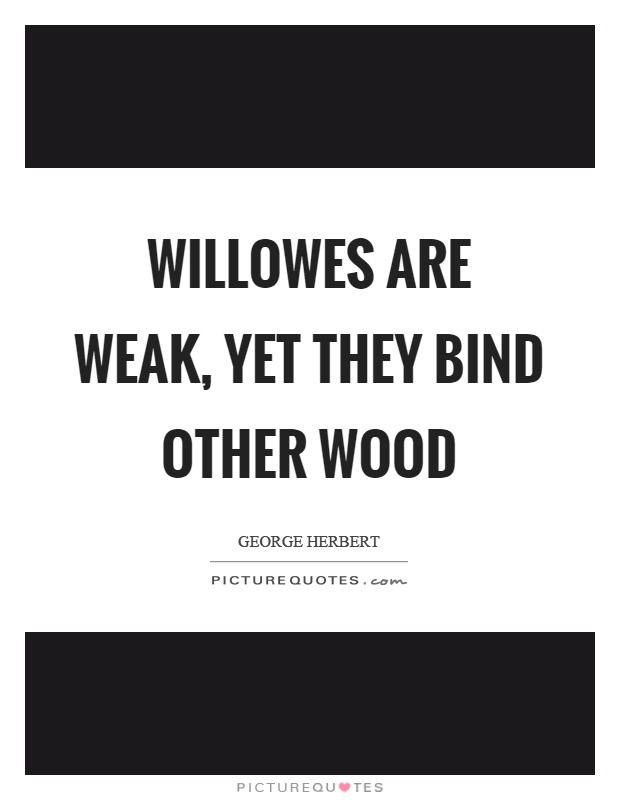 Willowes are weak, yet they bind other wood Picture Quote #1
