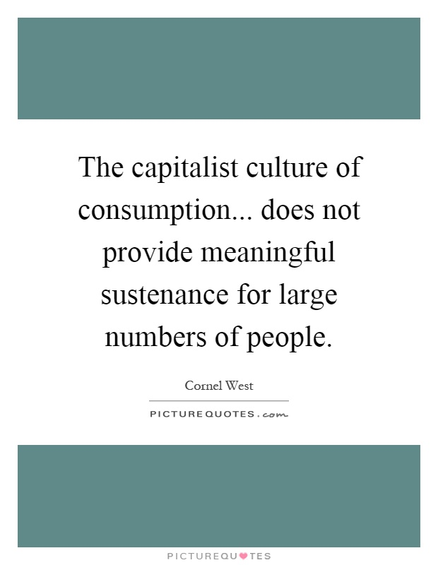 The capitalist culture of consumption... does not provide meaningful sustenance for large numbers of people Picture Quote #1