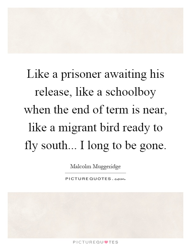 Like a prisoner awaiting his release, like a schoolboy when the end of term is near, like a migrant bird ready to fly south... I long to be gone Picture Quote #1