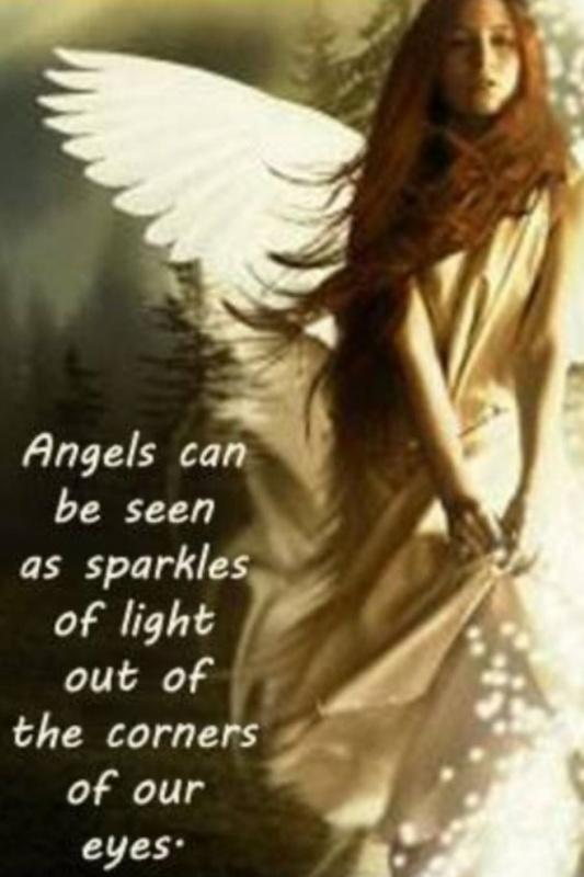 Angels can be seen as sparkles of light out of the corners of our eyes Picture Quote #1