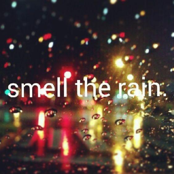 Smell the rain Picture Quote #1