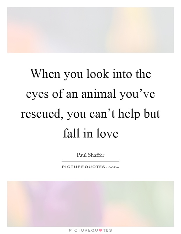 i love the way you look into my eyes quotes