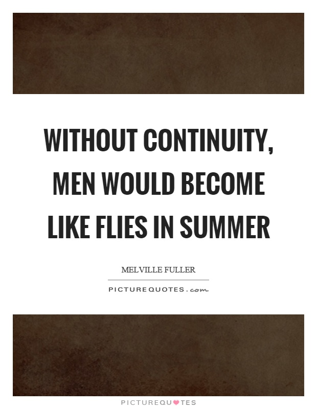 Without continuity, men would become like flies in summer Picture Quote #1