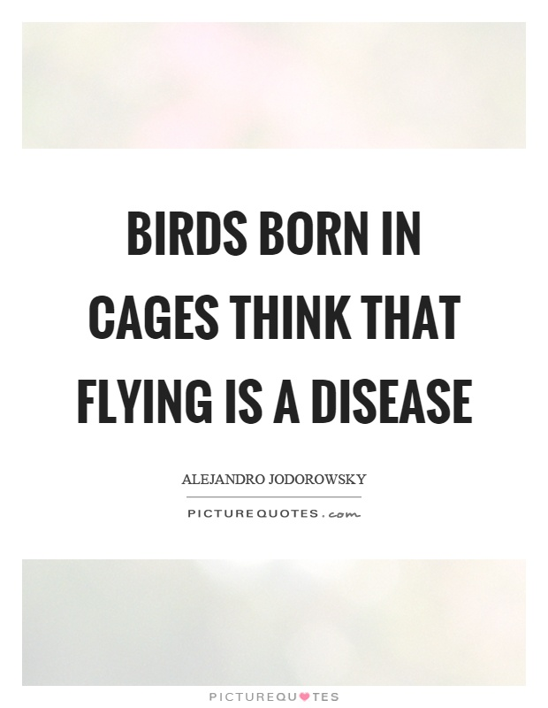 Birds born in cages think that flying is a disease Picture Quote #1