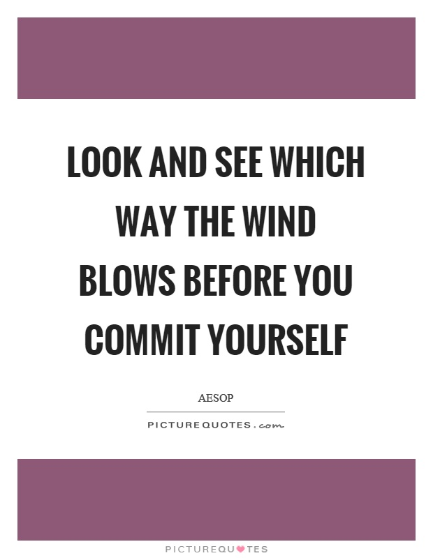 Look and see which way the wind blows before you commit yourself Picture Quote #1
