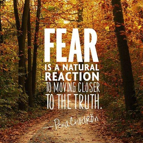 Fear is a natural reaction to moving closer to the truth Picture Quote #1