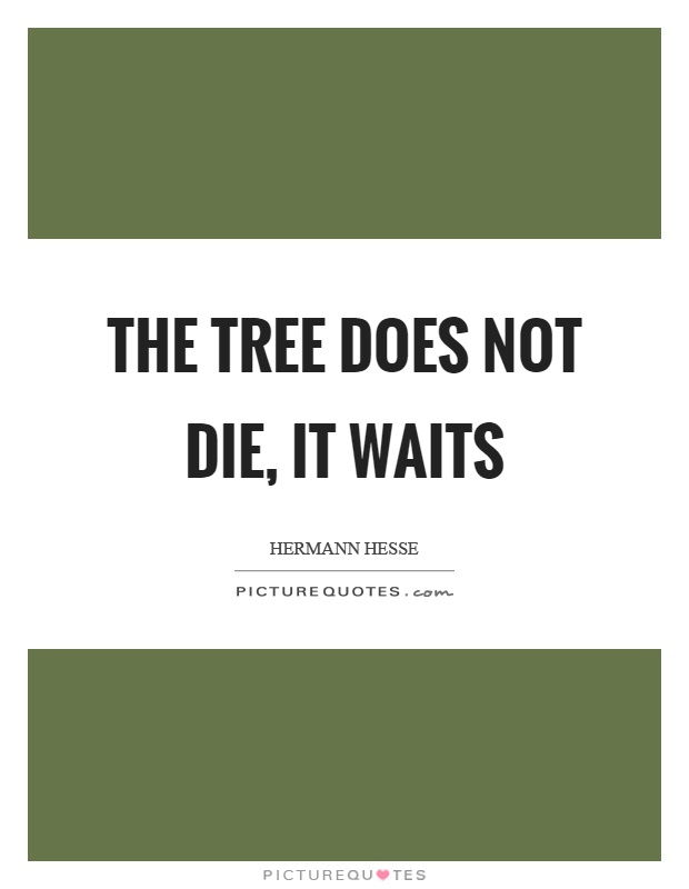 The tree does not die, it waits Picture Quote #1