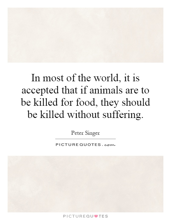 In most of the world, it is accepted that if animals are to be killed for food, they should be killed without suffering Picture Quote #1