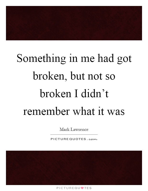 Something in me had got broken, but not so broken I didn't remember what it was Picture Quote #1
