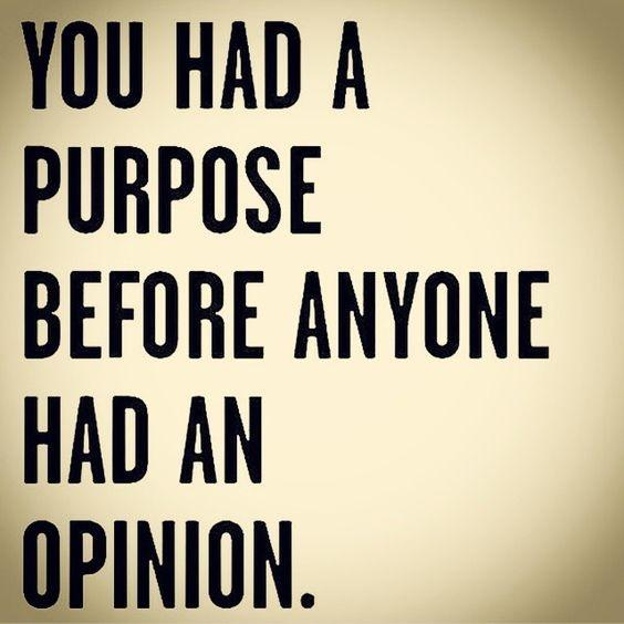 You Had A Purpose Before Anyone Had An Opinion Picture Quotes Stunning Purpose Quotes