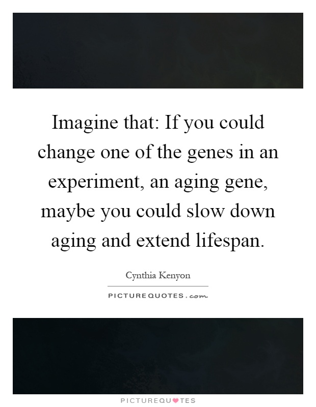 Imagine that: If you could change one of the genes in an experiment, an aging gene, maybe you could slow down aging and extend lifespan Picture Quote #1
