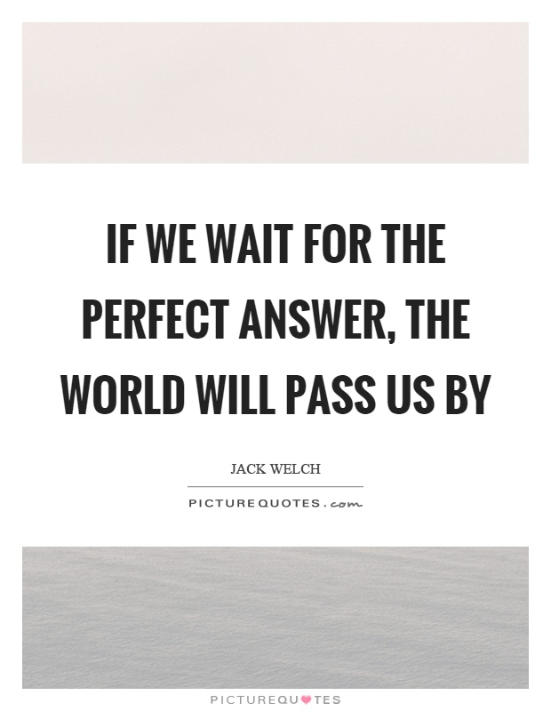 If we wait for the perfect answer, the world will pass us by Picture Quote #1