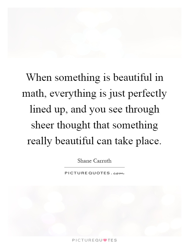 When something is beautiful in math, everything is just perfectly lined up, and you see through sheer thought that something really beautiful can take place Picture Quote #1