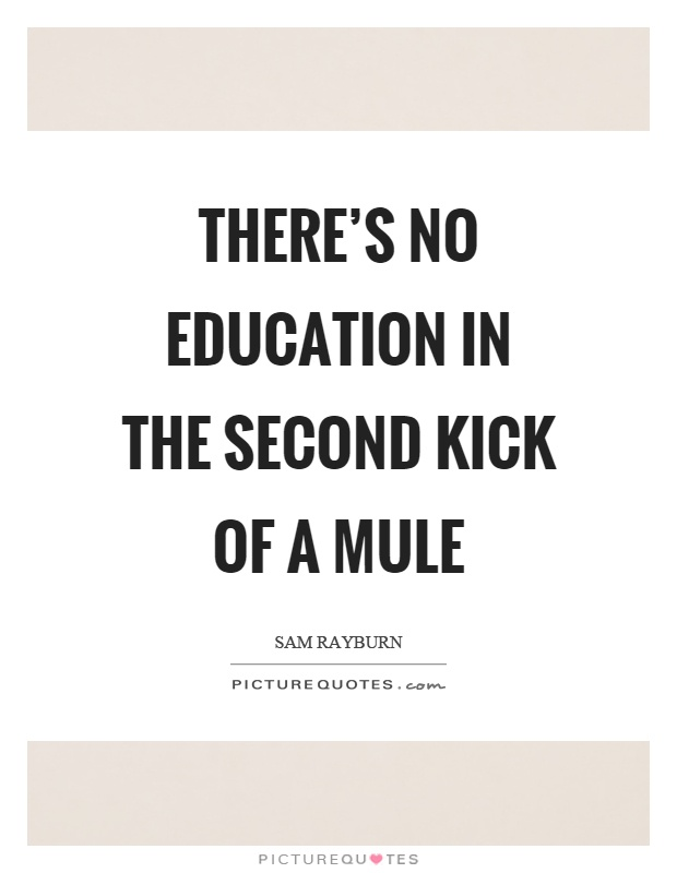 There's no education in the second kick of a mule Picture Quote #1