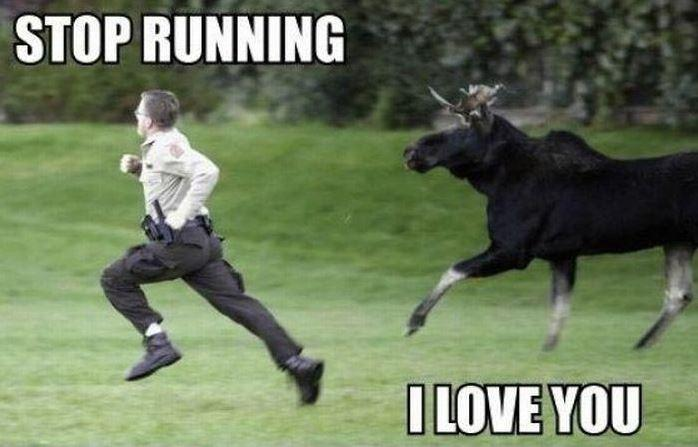 Stop running, I love you Picture Quote #1