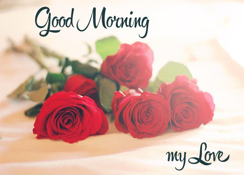 Good Morning Love Quotes Prepossessing Good Morning My Love  Picture Quotes