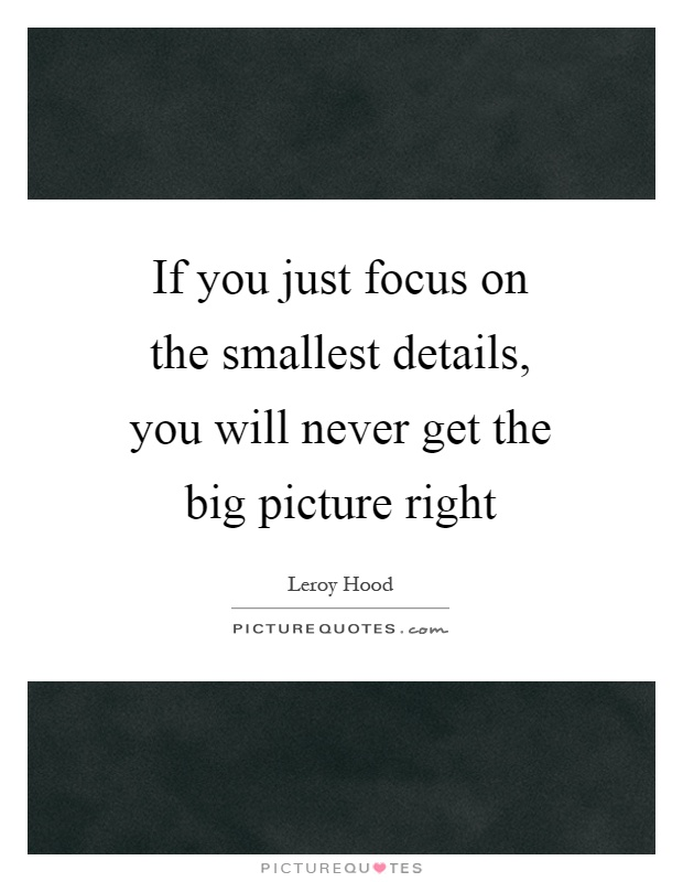 If you just focus on the smallest details, you will never get the big picture right Picture Quote #1