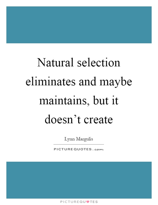 Natural selection eliminates and maybe maintains, but it doesn't create Picture Quote #1