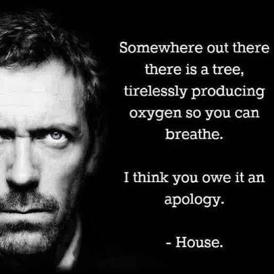 Somewhere out there there is a tree, tirelessly producing oxygen so you can breathe. I think you owe it an apology Picture Quote #1