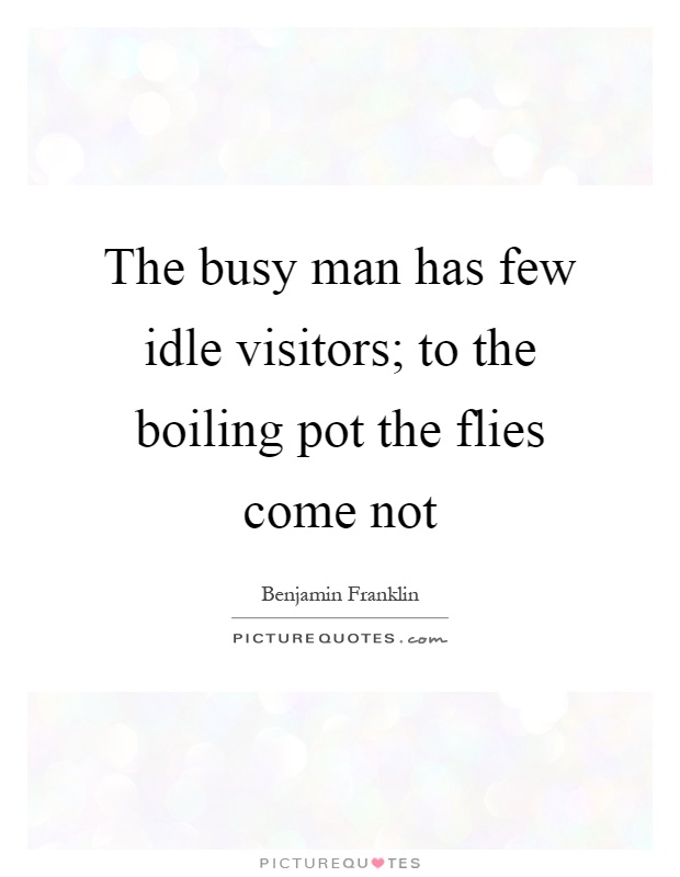 The busy man has few idle visitors; to the boiling pot the flies come not Picture Quote #1