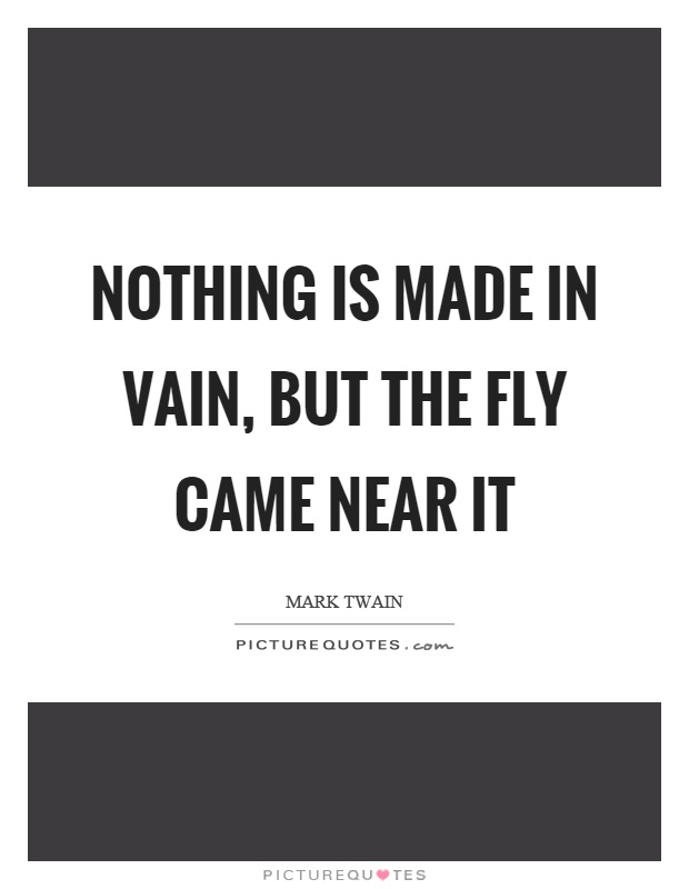 Nothing is made in vain, but the fly came near it Picture Quote #1