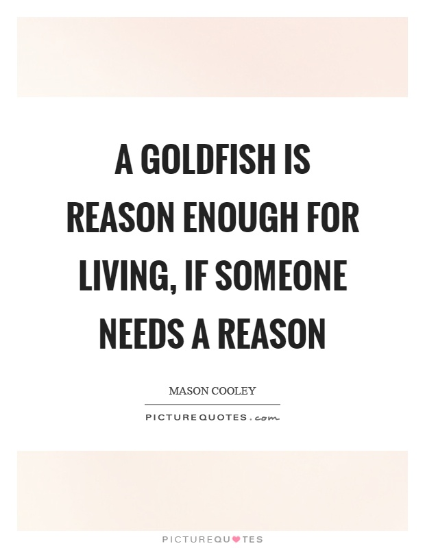 A goldfish is reason enough for living, if someone needs a reason Picture Quote #1